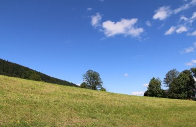 Von Aigen über Aigner Park auf die Gaisberg-Spitze